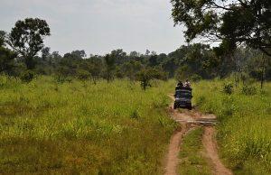 Voyage au Skri Lanka